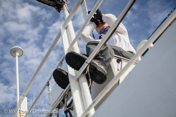 Greenpeace campaigner searches for FADs on the ship's monkey nest. 17 Apr, 2016  © Will Rose / Greenpeace