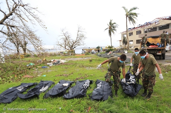 The authorities collect dead bodies, victims of the typhoon, near the Tacloban City Hall.