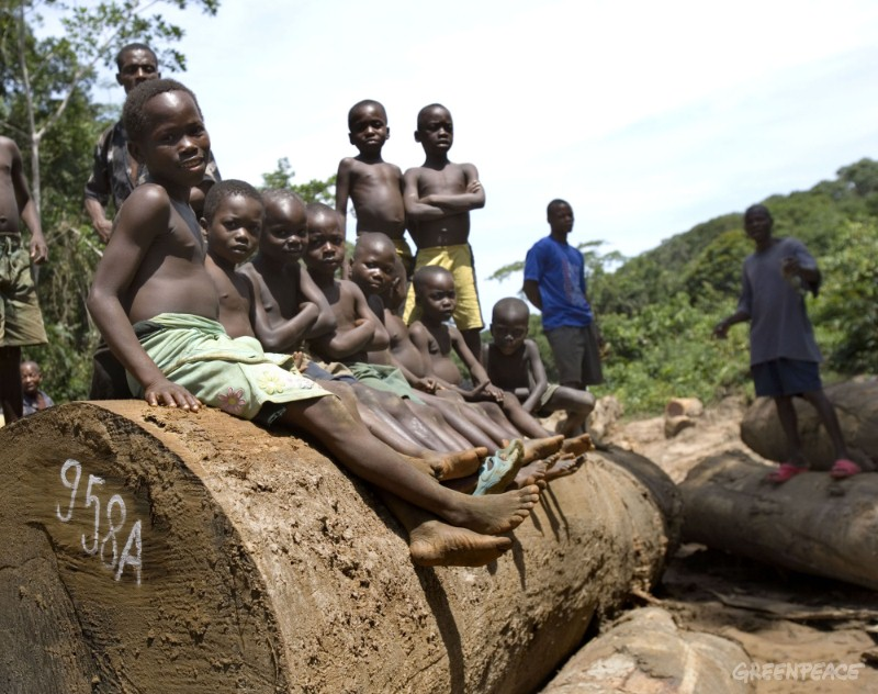 Children sit on logs in the Democratic Republic of the Congo. More than 21 million hectares of the nation's rainforest are now allocated to the logging industry.