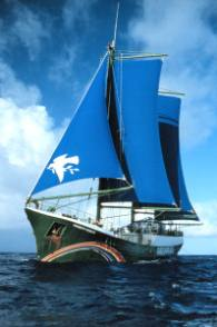 Sv Rainbow Warrior II