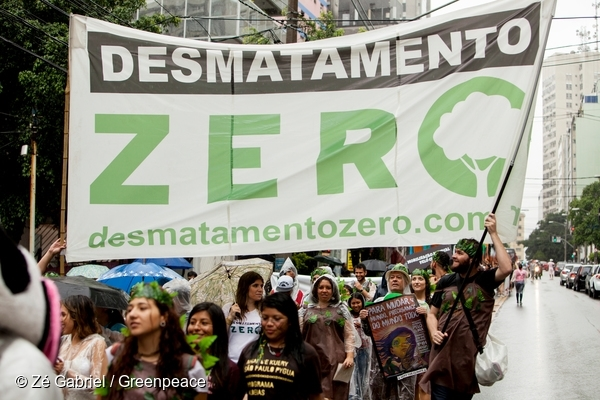Protesters holding the Zero Deforestation Flag down the Brigadeiro Luís Antônio street. About 2,300 people gathered at the Global Climate March in São Paulo, during bad weather. 29 Nov, 2015  © Zé Gabriel / Greenpeace