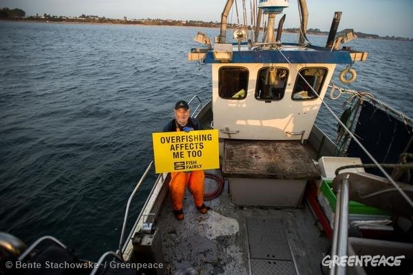 Low Impact Fisheries near Heiligenhafen in the Baltic Sea © Bente Stachowske / Greenpeace