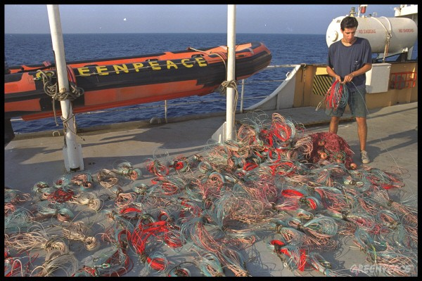 TRANSLATE: Greenpeace confiscated 140 hooks from a pirate longliner in protest against overfishing.
