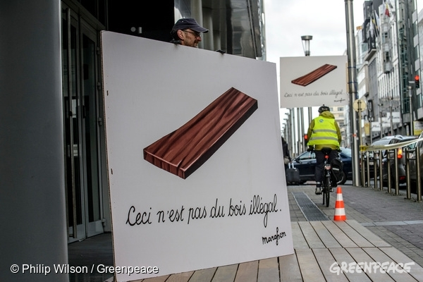 Greenpeace activists carry out an action in front of the cabinet of Belgian minister Marie-Christine Marghem, urging the minister to take action and work on a strict implementation of the EU Timber Regulation. In the picture, a sign shows a piece of timber and the text 'Ceci n'est pas du bois illégal', paraphrasing the famous art piece title of surrealist Belgian artist Magritte. 27 Apr, 2015 © Philip Wilson / Greenpeace