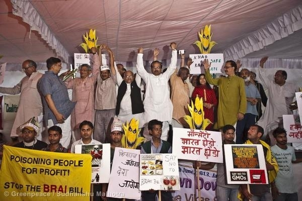 Various organisations including Greenpeace India launched a nation-wide campaign on June 25 demanding that the BRAI Bill, 2013, be withdrawn immediately