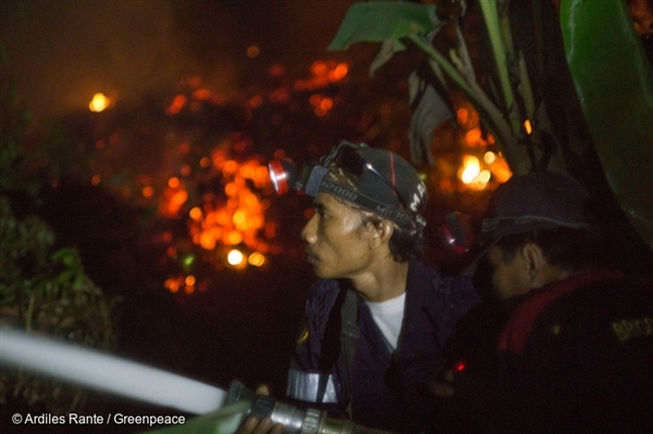 Firefighters extinguishes the fire of burning peatland