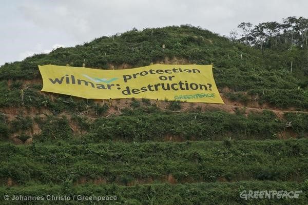 Banner at Wilmar International palm pil concession in Sumatra © Johannes Christo / Greenpeace