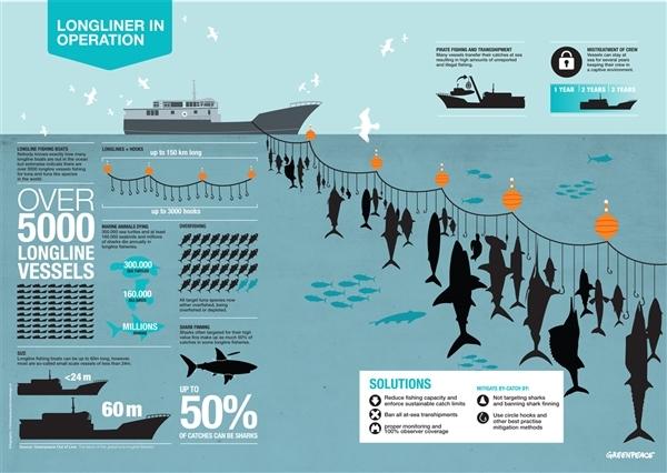 Longline infographic