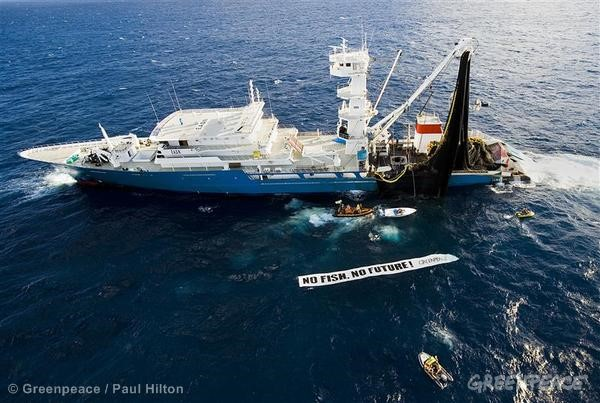 Action against the Biggest Tuna Fishing Vessel. 05/27/2008 © Greenpeace / Paul Hilton