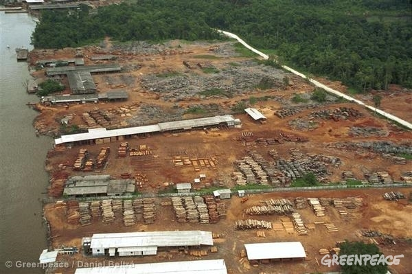 Aerial shot of a logging camp site in the Amazon.