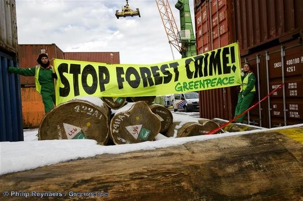 Forests Action on Illegal Timber in Antwerp