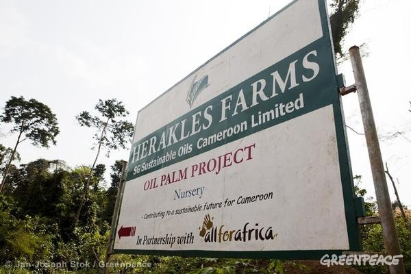 Herakles Farms sign in Cameroon