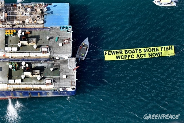 "Greenpeace activists unfold a banner next to a cluster of foreign longline fishing vessels at a harbour in the Pacific reading ""Fewer boats more fish WCPFC Act Now!"" urging the Western and Central Pacific Fisheries Commission (WCPFC) to act with urgency to save the fate of Pacific tuna and those who depend on it. ©James Alcock/Greenpeace"