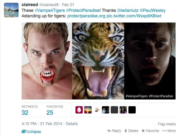 Twitter post with a macro posted by fan of Kellan Lutz and Paul Wesley, which shows the vampire stars beside a tiger.