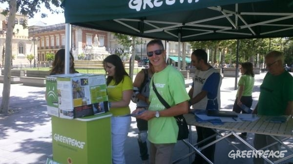 Greenpeace volunteers in Sevilla