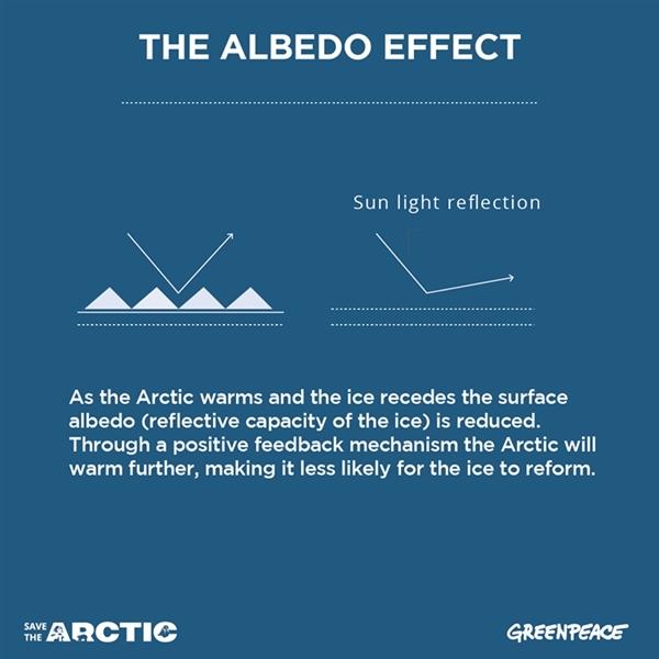 The Albedo Effect. @ Greenpeace