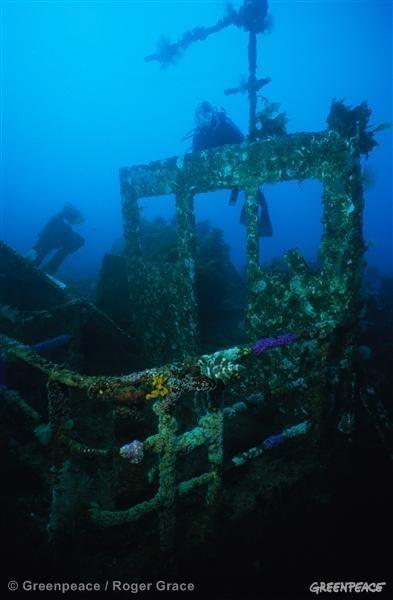 Rainbow Warrior wreck in New Zealand