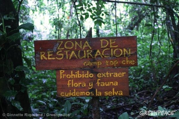 "A sign reads in Spanish: ""Restoration Zone, Top Che camp. It is prohibited to extract flora and fauna, take care of the forest"" located near Lacanja Chansayab, a community located in the limits of Montes Azules Biosphere Reserve, in Lacandona Rainforest. Lacanja Chansayab is one of the six communities participating in the REDD+ (Reduction Emissions from Deforestation and Degradation) Programme from the State Government."