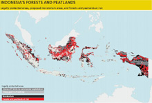 Indonesia's forests and peatlands graphic