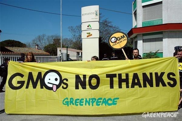 GMOs - No Thanks