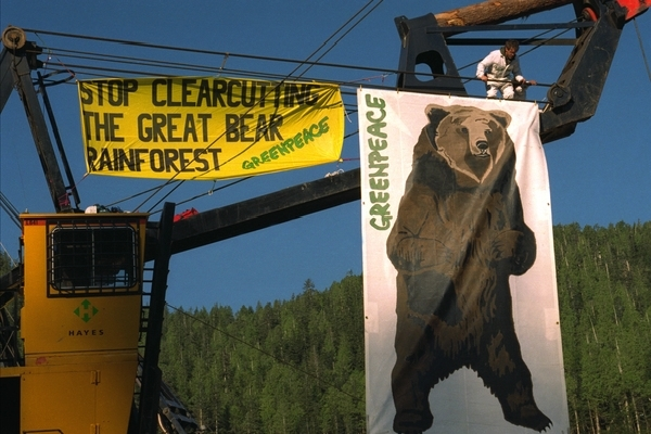 Banners on logging machines. Greenpeace activists occupy logging machines protest against clearcutting of Great Bear rainforest by Western Forest Products. 21 May, 1997 © Greenpeace / Mark Warford