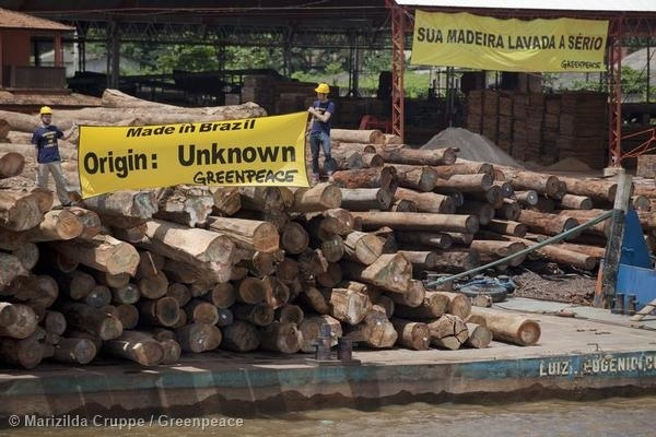 Protest against Illegal Timber in Brazil. 05/15/2014 © Marizilda Cruppe / Greenpeace