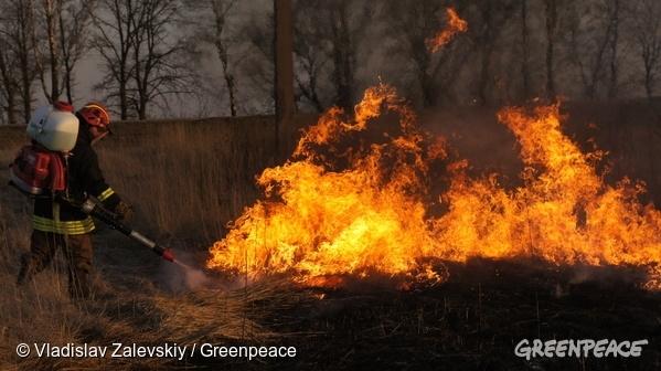 Firefighters tackle the flames in Bryansk region. 07/04/2016 © Vladislav Zalevskiy / Greenpeace