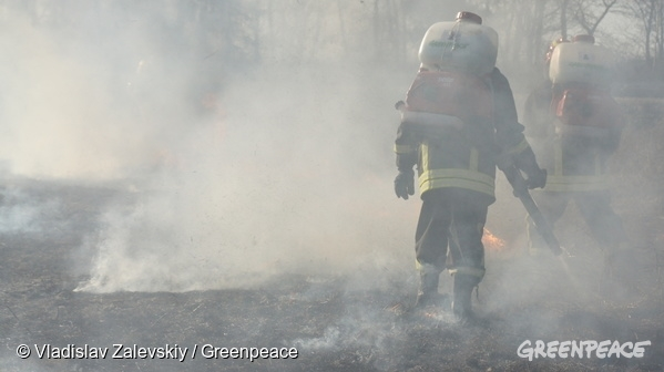Greenpeace firefighters work hard to stop the spreading of the fires. 07/04/2016 © Vladislav Zalevskiy / Greenpeace