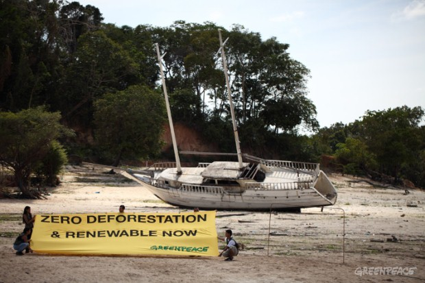 Greenpeace calls for zero deforestation in the Amazon Basin