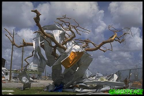 Damage caused by Hurricane Andrew, USA.