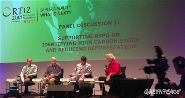Grant Rosoman (far left) Greenpeace Forest Solutions Project Coordinator, speaking at a panel on High Carbon Stock, moderated by the David Suzuki. © Laurel Sutherlin/RAN
