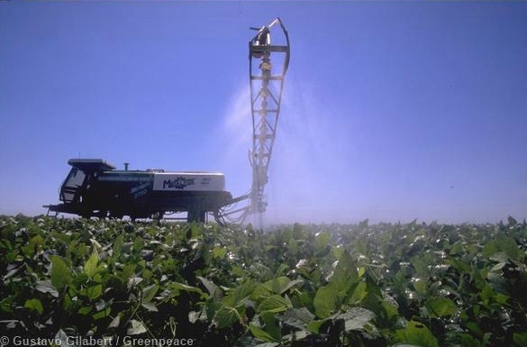Spraying of genetically engineered soya. 02/01/1997 © Gustavo Gilabert / Greenpeace