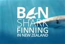 New Zealand: Nicer to elves than sharks