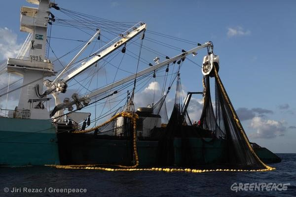 Purse Seiner Fishing in the Indian Ocean. 04/15/2013 © Jiri Rezac / Greenpeace