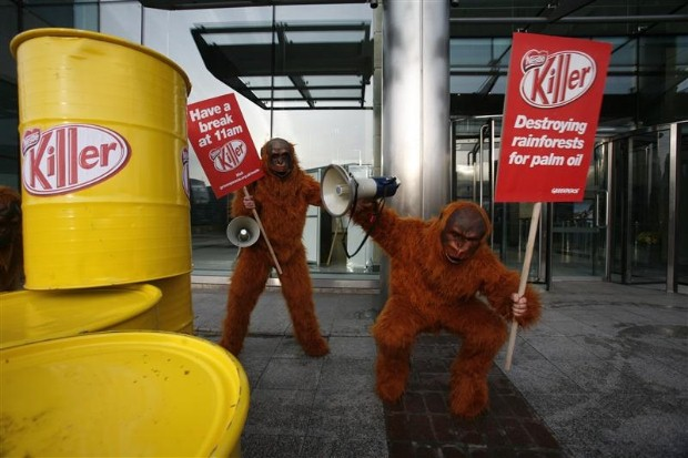Activists dressed as orangutans at Nestle's HQ in Croydon