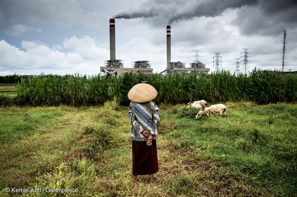 A shepherdess watches over her flock of sheep that graze near a coal power plant in Jepara, Central Java. Coal burning causes a trail of destruction that is no less harmful than coal mining.