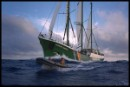 RAINBOW WARRIOR II en route to Moruroa atoll