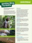 FACTSHEET: Protecting Forests