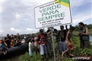 Illegal Farm in the Amazon: Not For Sale