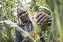 Farmers make more money with ecological farming- Greenpeace