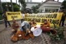Greenpeace, Indonesian NGOs call on Ministry of Economic Affairs to make a good moratorium possible