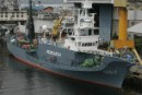Season May be Ended for Damaged Whaling Ship