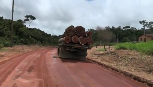 Amazon Illegal Logging Caught in the Act