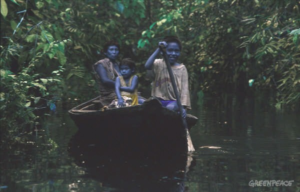 Deni people rowing on river.