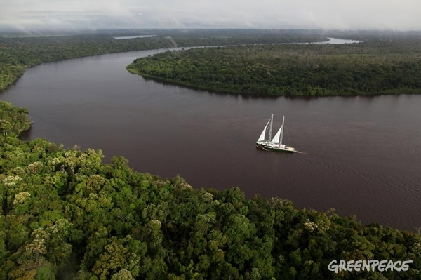 The Rainbow Warrior sails through the Amazonas river