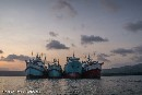 A wave of change for Thai fishing fleets and the global seafood industry