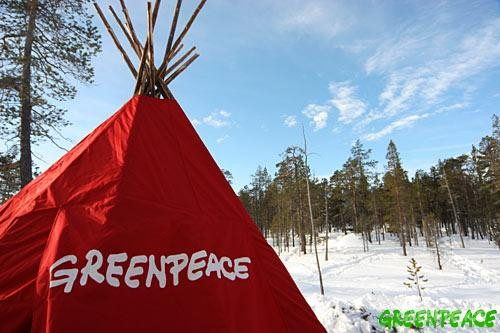 Traditional Sámi tent or kota which is part of the Finland Forest Rescue Station. We have joined Sámi reindeer herding communities to defend their forest against logging.