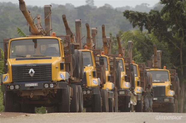 Timber trucks, Central African Republic