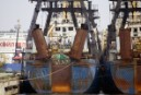 Greenpeace Evidence Prompts Russia to Detain Notorious Pirate Fishing Fleet