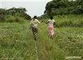 Hand in hand to protect the Congo Basin forests